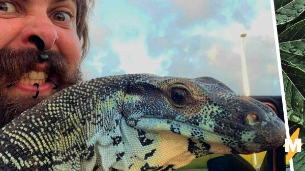 Мужчина вырастил настоящего динозавра, но тот сбежал. Соседи не рады были проснуться в Парке юрского периода