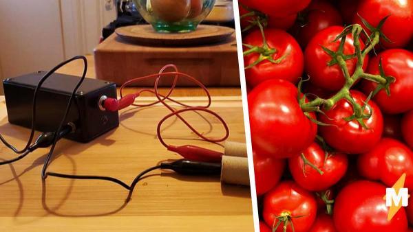 Женщина спасла током помидоры и решила им бить себя. Теперь