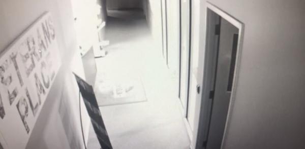 Мужчина думал, в офис ночью забираются вандалы, пока не увидел запись с камер. Эта угроза копам не по зубам
