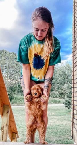 Девушка показала, как изменился щенок за три месяца, и люди не верят глазам. Изоляция не пощадила даже пёселей