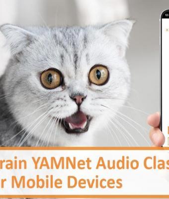 Приложение MeowTalk переводит кошачий язык на человеческий. Достаточно записать «мяу» и понять причину «кусь»