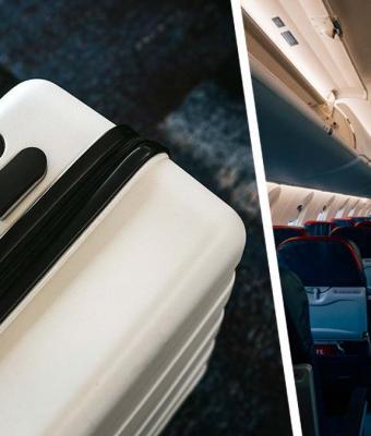 Судмедэксперт сказала стюардессе, что везёт в сумке, и получила место в бизнес-классе. А могла бы за решёткой