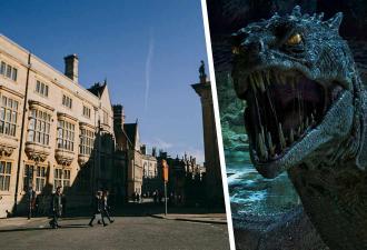 Девочка гуляла с дедушкой и нашла артефакт из мира Гарри Поттера. Но монстра, который его обронил, всем жалко