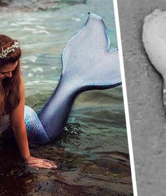 Если бы русалки существовали, их язык выглядел бы так. Море вымыло нечто, доказавшее: природа удивительна