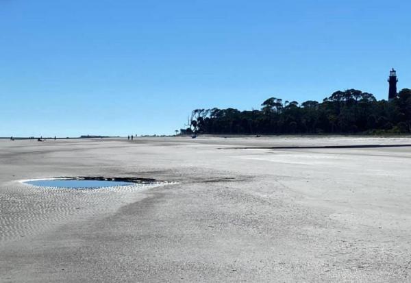 Девушка нашла на пляже огромный, но находка удивила учёных.