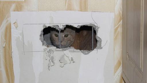 Парень сделал ремонт в доме и обнаружил за стенами зло.