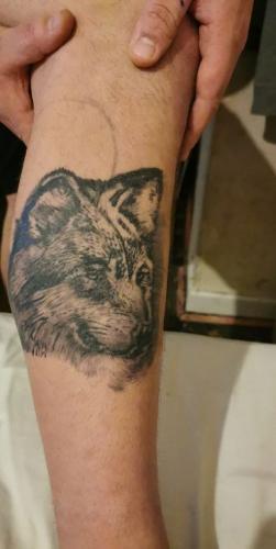 Татуировщик выполнил просьбу клиента, но выдал своё доброе сердце. Вместо волка на ноге парня появилась