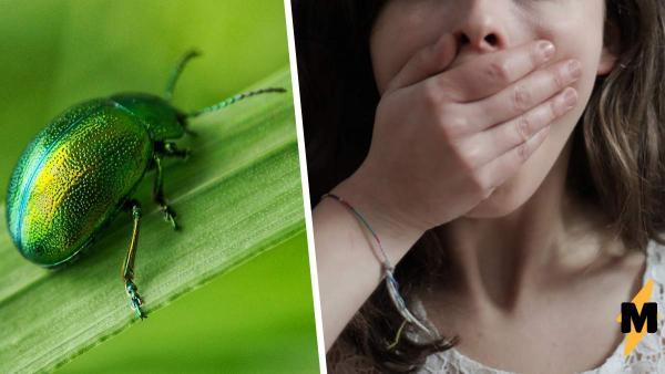 Муж-актёр так вжился в роль жука, что довёл жену. Ещё бы, шипящее ленивое насекомое не лучший спутник по жизни