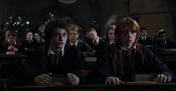 """Девушка завела питомца из """"Гарри Поттера"""". У него масса плюсов, но восемь лап вряд ли к ним относятся"""