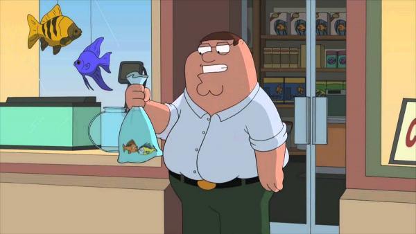 У девочки из аквариума загадочно исчезла рыбка. Через 12 лет девушка отодвинула шкаф и узнала, что случилось