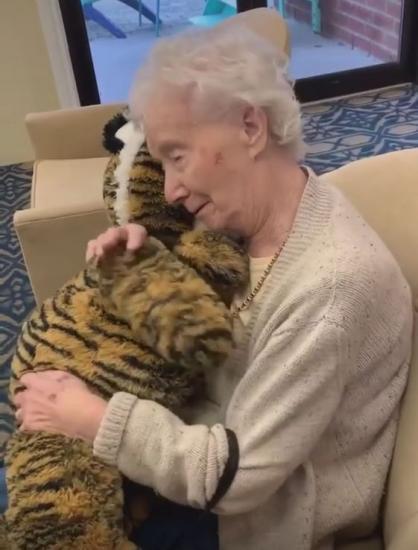Бабушка получила в подарок тигра