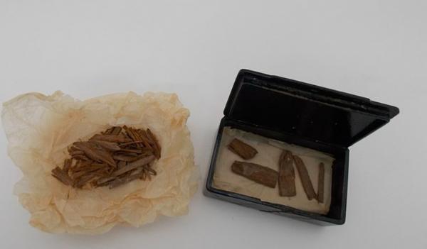 Студентка нашла коробку из-под сигар и не поверила, заглянув внутрь. Там были настоящие египетские сокровища