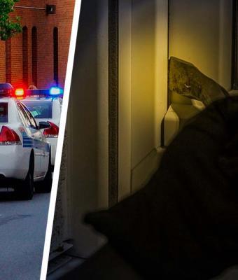 Копы приехали к мэрии предотвращать взлом, но были бессильны. Их встретила мохнатая банда в масках и перчатках