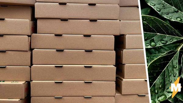 Парень показал, как использовать пустую коробку, люди не оценили. А Грета Тунберг была бы в восторге