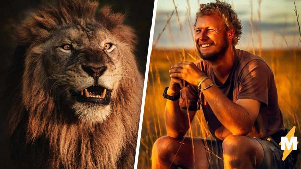 Ситуация: вы в палатке, а снаружи лев. Учёный объяснил, как пережил драку с хищником, а его друзья - почему