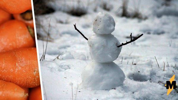 Женщина слепила снеговика, и его нос вышел особенно хорошо. Настолько, что ушастый Гринч не смог пройти мимо