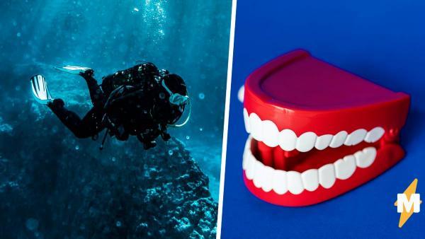 Мужчина нырнул под воду и нашёл на дне челюсть. Вот только вы не захотите знать, у какого старичка она выпала