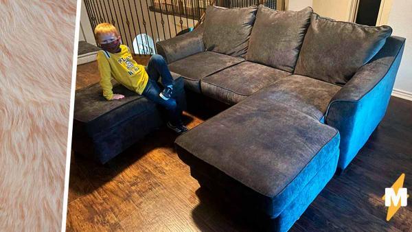 Хозяйка купила диван, но не заметила, что приобрела гораздо больше. Когда мебель ожила, делать возврат было поздно