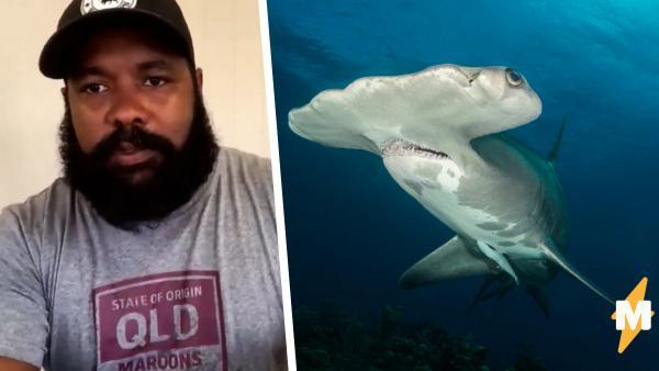 Акула напала на дайвера, и тот проверил секретный приём - удар камерой. Теперь у парня впечатляющие кадры