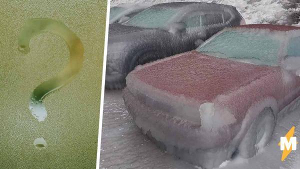 Иностранцы увидели ледяные машины из Владивостока и сломались. Шуток не меньше, чем вопросов
