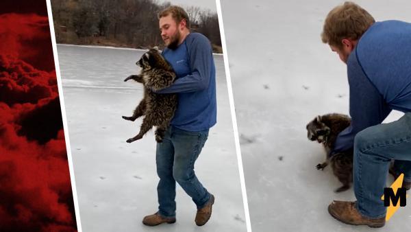 Парень спасал енота со льда, но тот выдал дикий рык. И такой, что фанатам Call of Duty точно понравится