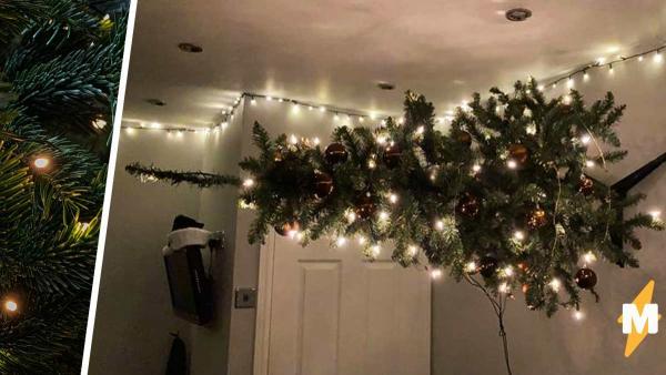 Парень не знал, куда поставить новогоднюю ёлку, но решил хакнуть закон гравитации. Поставил ёлку на стену