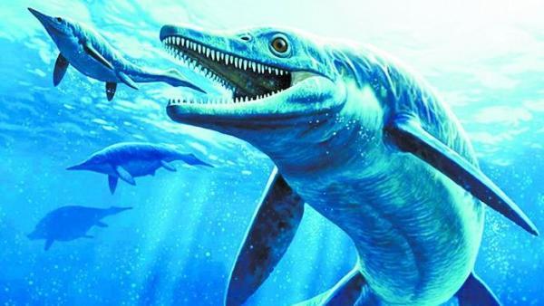 У простого водопроводчика совсем не простое хобби. Он нашёл морского дракона, который стал находкой для науки