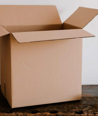 Женщина ждала документы и получила посылку с сюрпризом. Внутри был зверёк, что не может существовать в природе