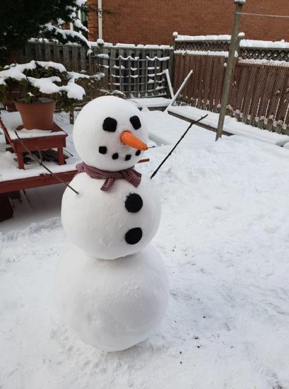 Девушка сделала идеального снеговика. Место ему в палате мер и весов