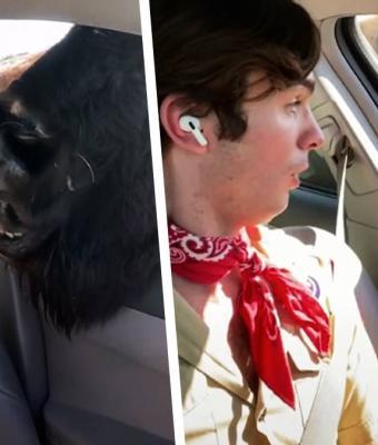 Блогер кормил оленя, но увидел, что бизон тоже не прочь закусить. Реакция парня затмила лучших оперных певцов