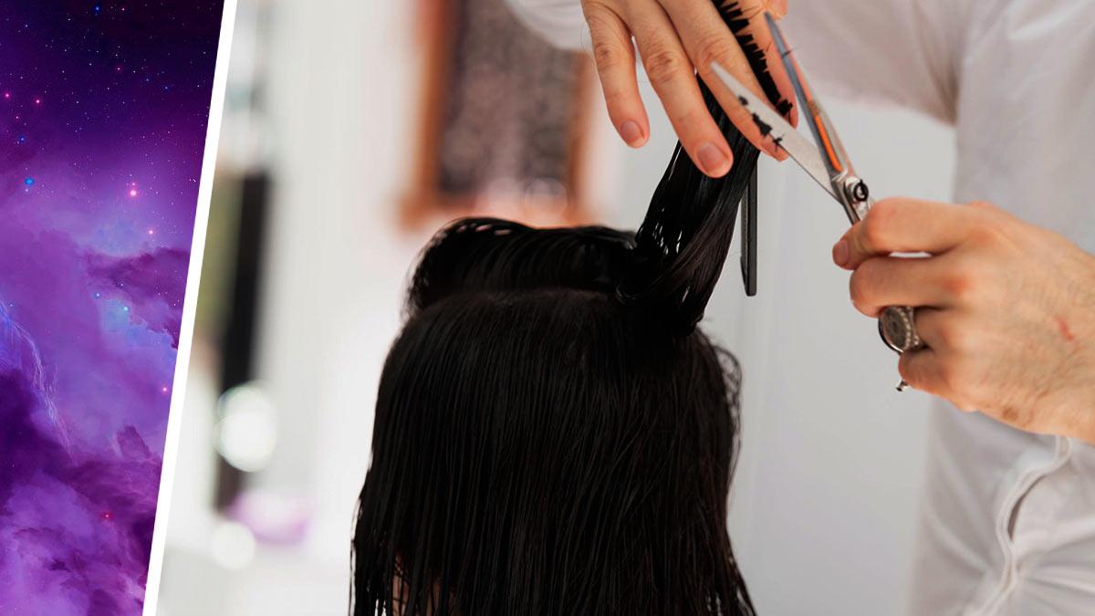 Стилистка делает причёски для пришельцев и Илона Маска. Посмотрите на эти волосы — и они посмотрят в ответ