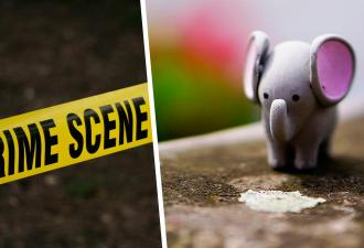 На ступенях домов появились маленькие слоны. Когда хозяин раскрыл причину нашествия, люди были готовы плакать