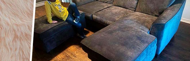 Хозяйка купила диван, но не заметила, что приобрела гораздо больше. Когда тот ожил, делать возврат было поздно