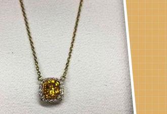 Собачница носит на шее единственный в своём роде алмаз. Вы не будете ей завидовать, узнав, из кого он сделан