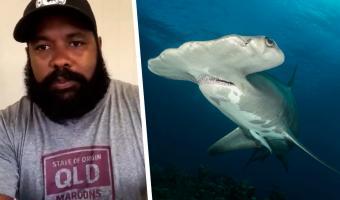 Акула напала на дайвера, и тот проверил секретный приём — удар камерой. Теперь у парня впечатляющие кадры