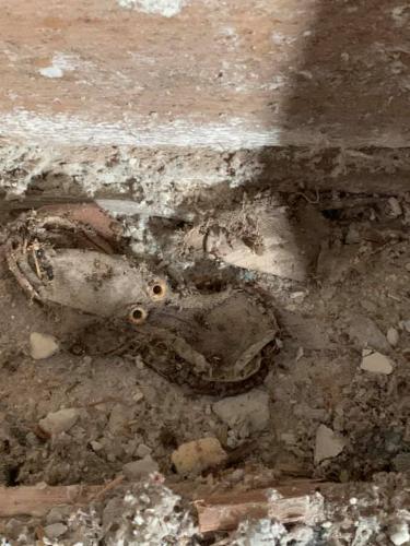 Ремонтники сломали стену и нашли в ней детские ботинки. Криминала в этом нет, но хозяйка теперь потеряла покой