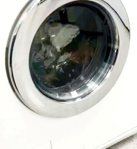 Хозяйка думала, что устроила стирку, а на деле запустила космонавта. Правда, когд