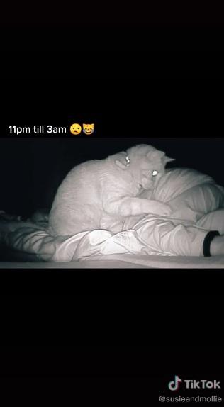 Девушка постоянно ощущала дикую усталость. Стоило установить на ночь камеру, стало понятно, кто ворует её сон