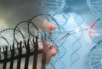Мужчина сдал ДНК-тест и узнал: сын — не от него. Он счастлив, ведь это единственный способ выйти из тюрьмы