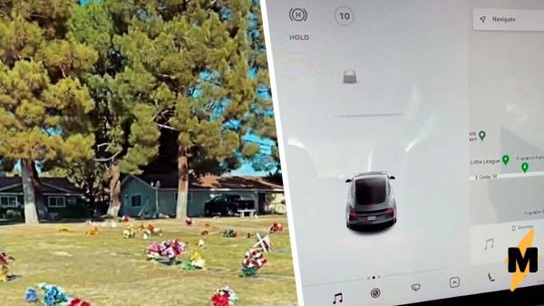 Мужчина проезжал на Tesla мимо кладбища. Датчики автомобиля засекли «человека-невидимку»
