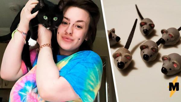 Женщина заметила у кошки добычу и не могла понять, что это. Узнав ответ, ей пришлось извиняться перед соседями