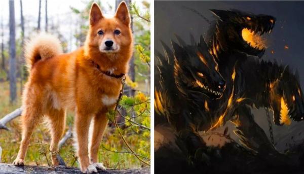 """Хозяйка обучила собаку команде, пугающей людей. Стоит питомице услышать """"демон"""" - и фильмы ужасов отдыхают"""