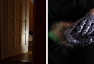 Маме пришло уведомление: в комнате спящей дочки кто-то есть. Взглянув на видеоняню, она увидела шерсть и когти