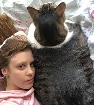 Этот котик слишком большой, хотя всю жизнь сидит на диете. Хозяйка просит не винить её, а винить генетику