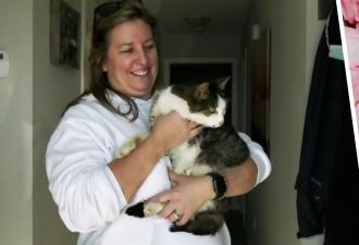 Потерявшийся 10 лет назад котик вернулся в семью благодаря микрочипу. Киберпанк, который мы заслужили