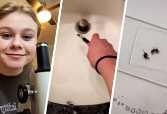 Девушка изучила под микроскопом пробу, взятую со дна раковины. Узнав, что там живёт, люди хотят это развидеть