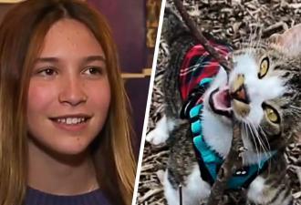 Девочка написала трогательное эссе о своём коте. Теперь у него лапки, а у неё — четыре миллиона рублей