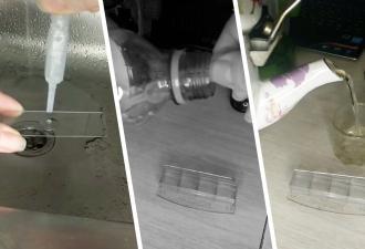 Девушка рассмотрела четыре пробы воды под микроскопом и нашла «чудо». Теперь любителям есть снег не до смеха