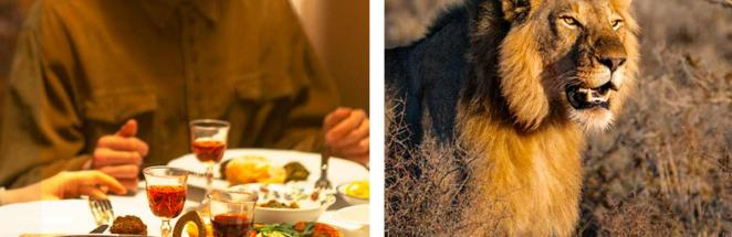 Туристов пригласили на пикник в саванне, но стол был уже занят. Глядя на гостя, люди поняли: еда тут — они