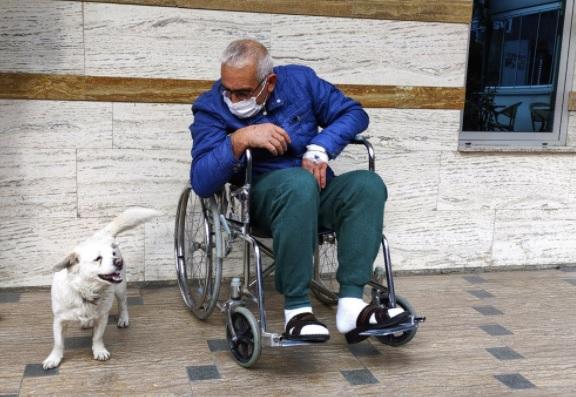 Дедушка попал в больницу, но за него не стоит беспокоиться. Его покой охраняет самый хороший мальчик в мире